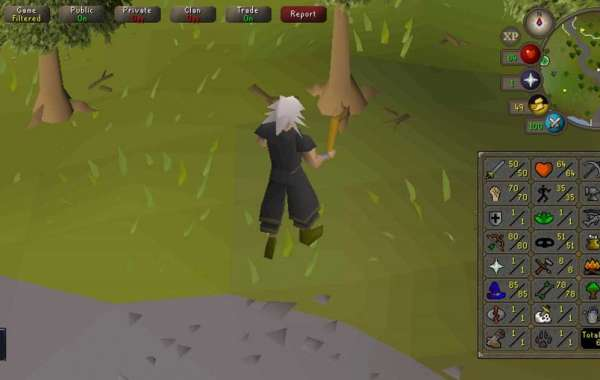 In RuneScape there's a good deal of things to do