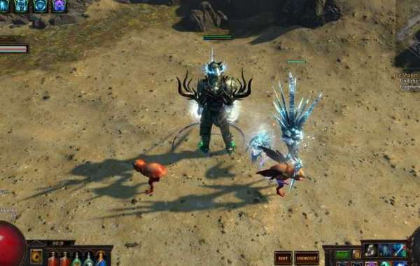What achievements have Path of Exile made last year