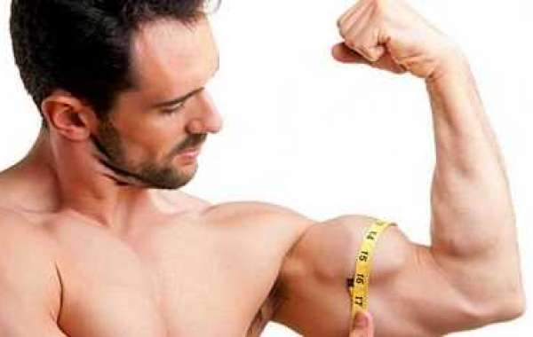 Find Out How to Build Lean muscle Pronto!