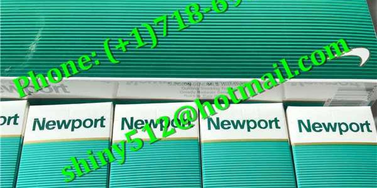 Cheap Newport Cigarettes Wholesale display frame